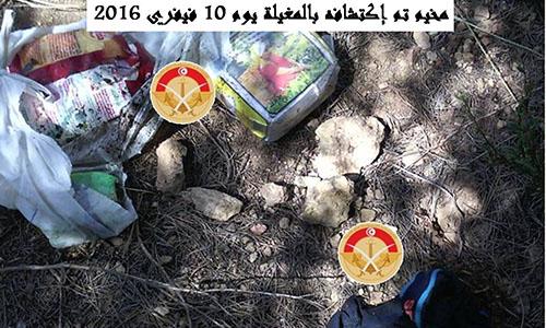مخيم ارهابي 2